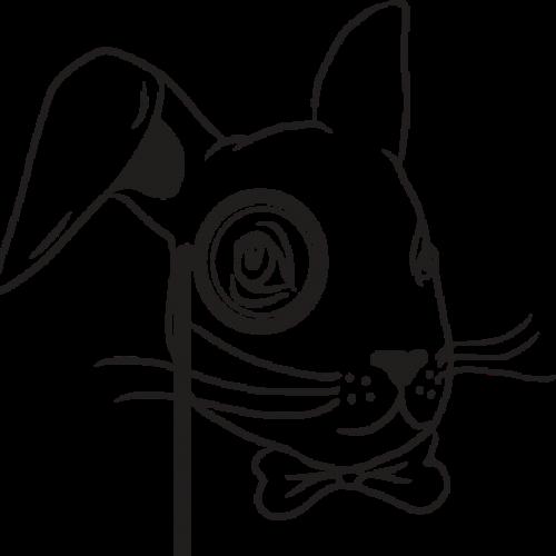 Wiser Hare sprl