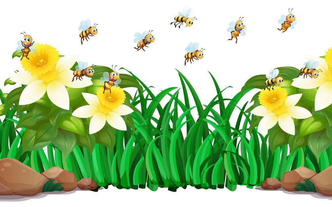PlugRoom – La ruche créative – Ce mardi 7 septembre 20h